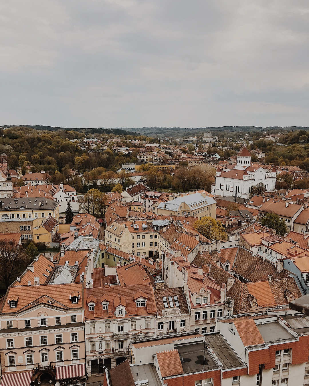 Semester Abroad in Lithuania